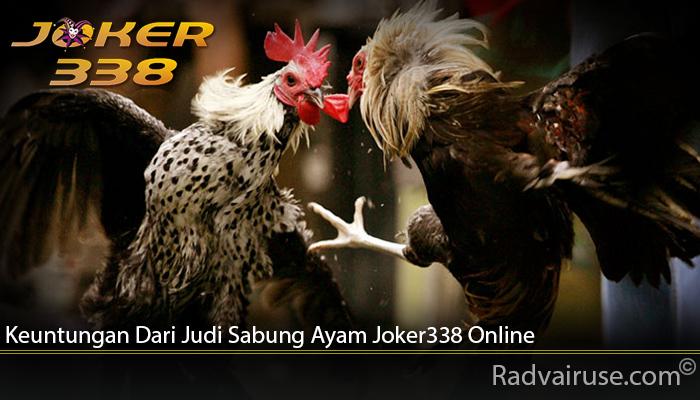 Keuntungan Dari Judi Sabung Ayam Joker338 Online